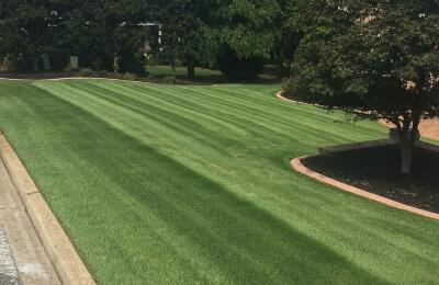 Lawn Care Anderson, SC